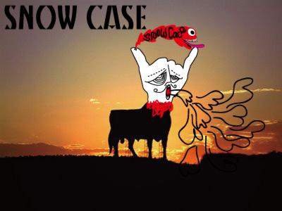 Snow-case
